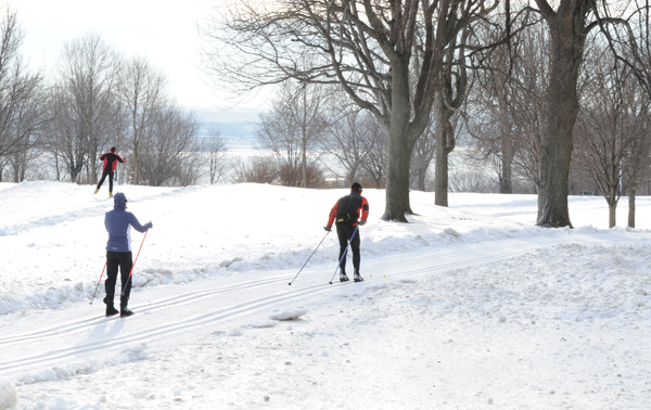 Cross Country Skiing at the Plains of Abraham